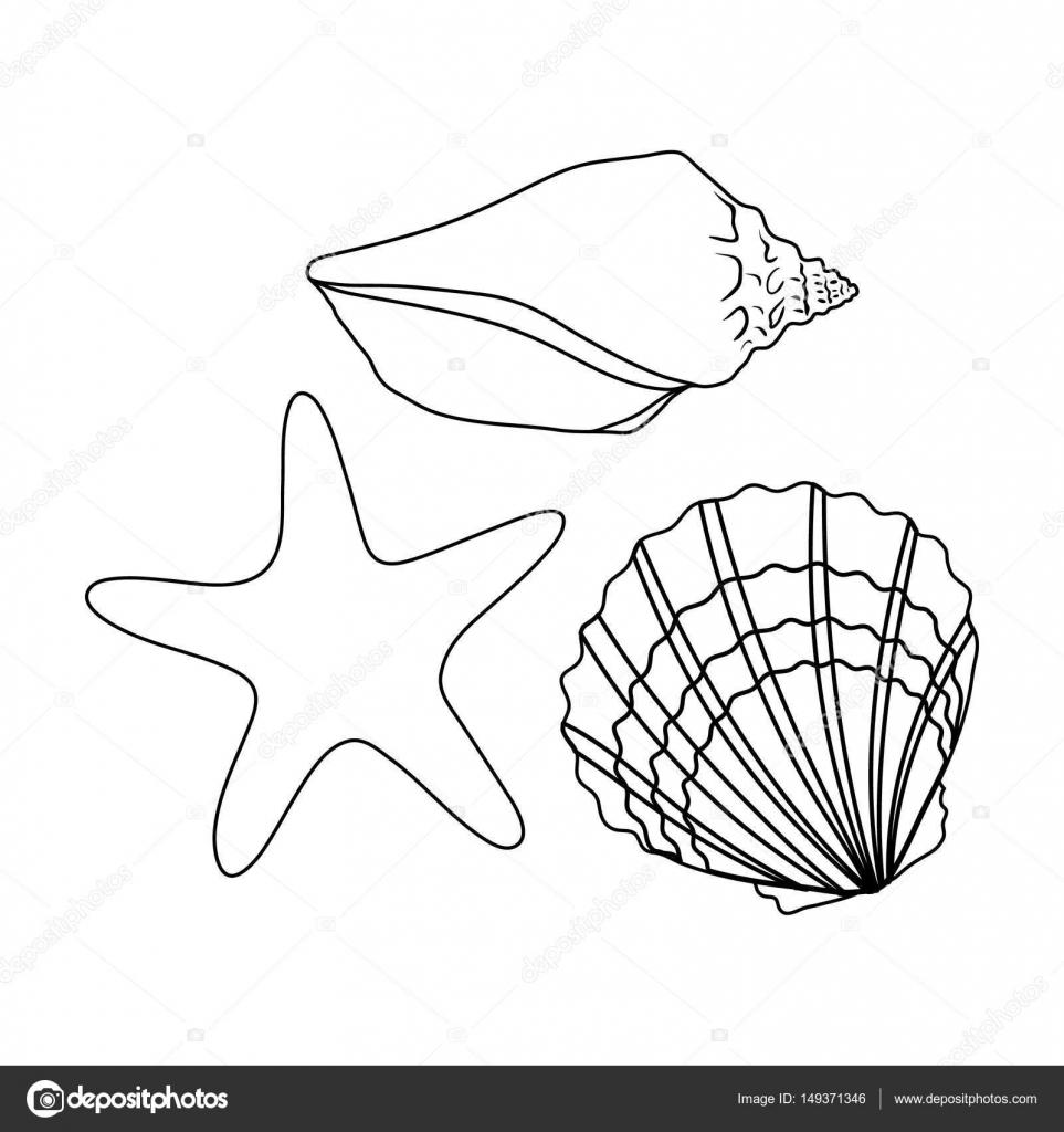 Muscheln aus dem Boden des Meeres. Sommer Rest einzelnes Symbol im ...