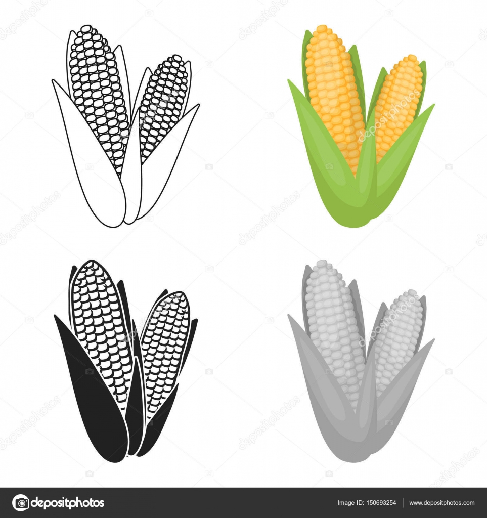 Sweet corn icon in cartoon style isolated on white background sweet corn icon in cartoon style isolated on white background canadian thanksgiving day symbol stock biocorpaavc Choice Image