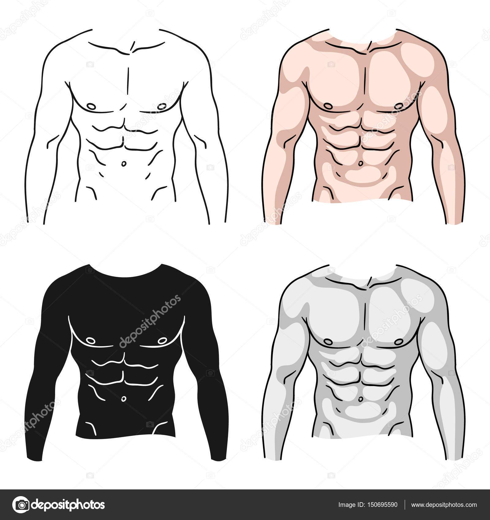Muskulösen Oberkörper Symbol im Cartoon-Stil, die isoliert auf ...