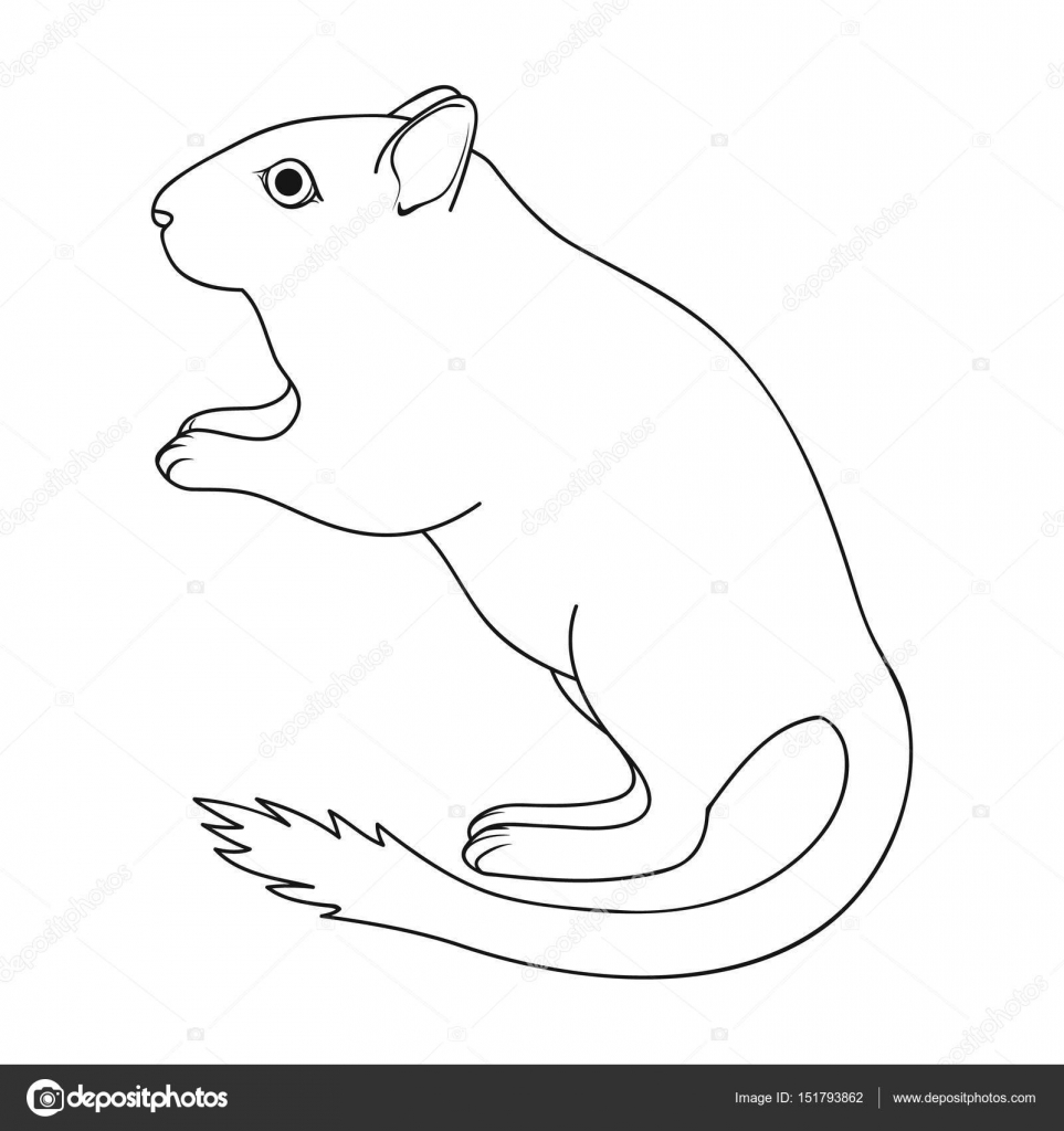 Jerbo gris. Animales solo icono en la web de contorno estilo vector ...