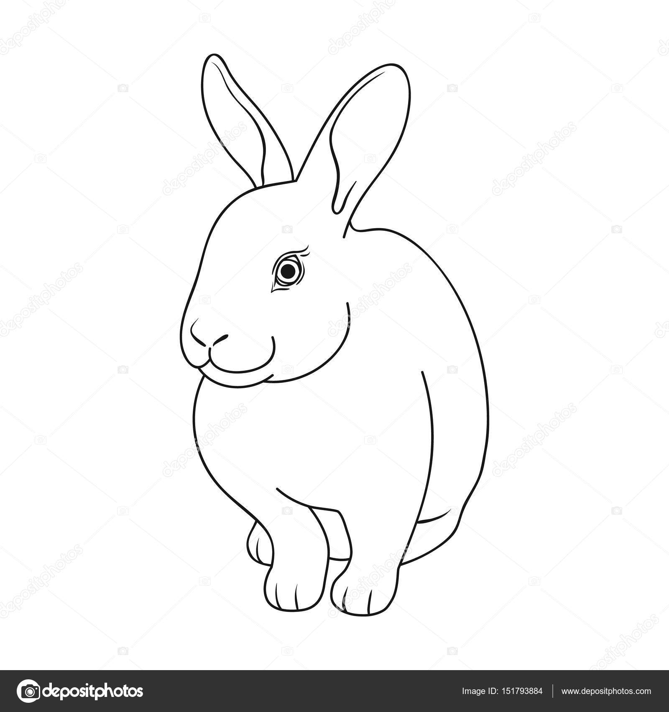 Conejo gris. Animales solo icono en la web de contorno estilo vector ...
