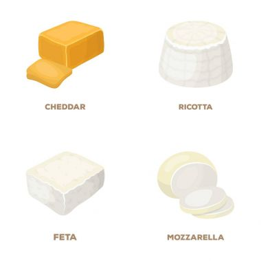 Mozzarella, feta, cheddar, ricotta.Different types of cheese set collection icons in cartoon style vector symbol stock illustration web.