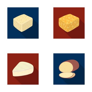 Brynza, smoked, colby jack, pepper jack.Different types of cheese set collection icons in flat style vector symbol stock illustration web.