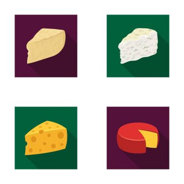 Parmesan, roquefort, maasdam, gauda.Different types of cheese set collection icons in flat style vector symbol stock illustration web.