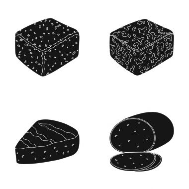 Brynza, smoked, colby jack, pepper jack.Different types of cheese set collection icons in black style vector symbol stock illustration web.