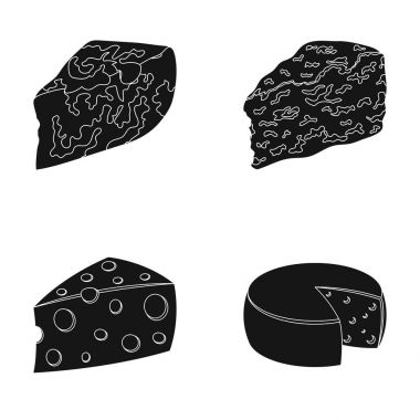 Parmesan, roquefort, maasdam, gauda.Different types of cheese set collection icons in black style vector symbol stock illustration web.