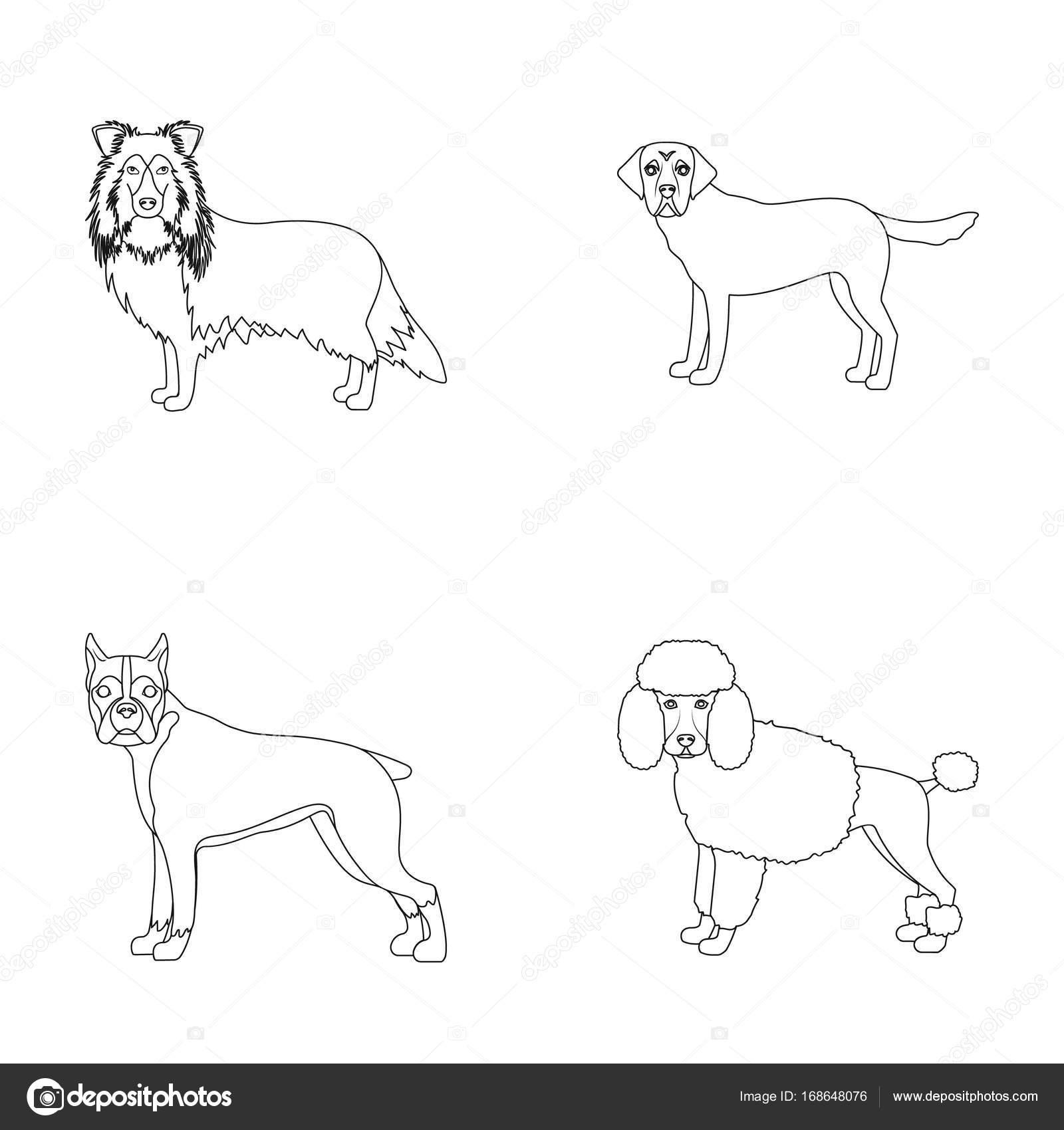犬、ライカ、ビーグル、アウトラインのスタイルの web アイコン