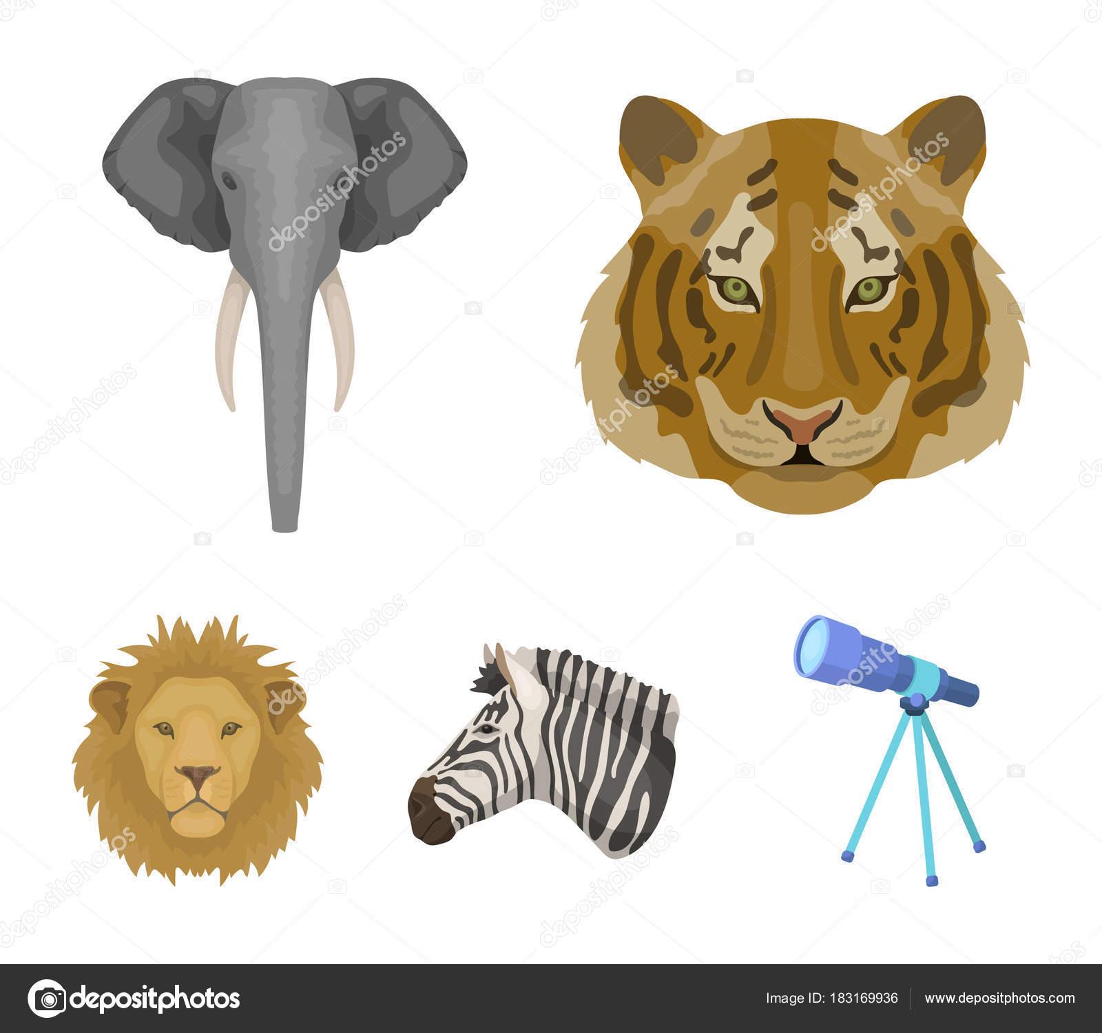 Tigre Lion Elephant Zebre Animaux Realistes Figurant Icones