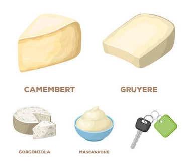 Gruyere, camembert, mascarpone, gorgonzola.Different types of cheese set collection icons in cartoon style vector symbol stock illustration web.