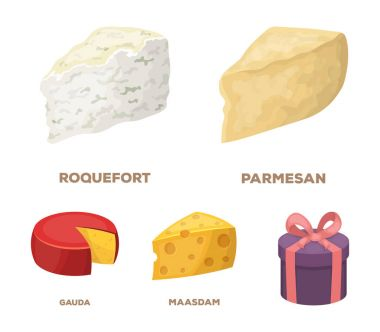 Parmesan, roquefort, maasdam, gauda.Different types of cheese set collection icons in cartoon style vector symbol stock illustration web.