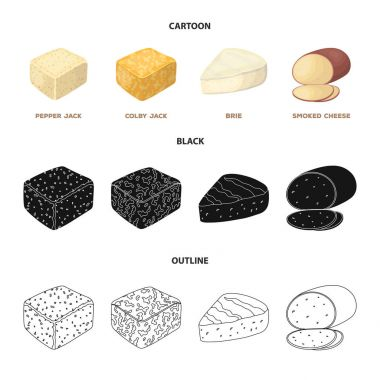 Brynza, smoked, colby jack, pepper jack.Different types of cheese set collection icons in cartoon,black,outline style vector symbol stock illustration web.