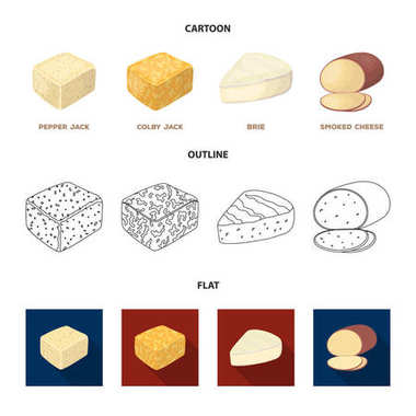 Brynza, smoked, colby jack, pepper jack.Different types of cheese set collection icons in cartoon,outline,flat style vector symbol stock illustration web.