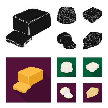 Mozzarella, feta, cheddar, ricotta.Different types of cheese set collection icons in black, flat style vector symbol stock illustration web.