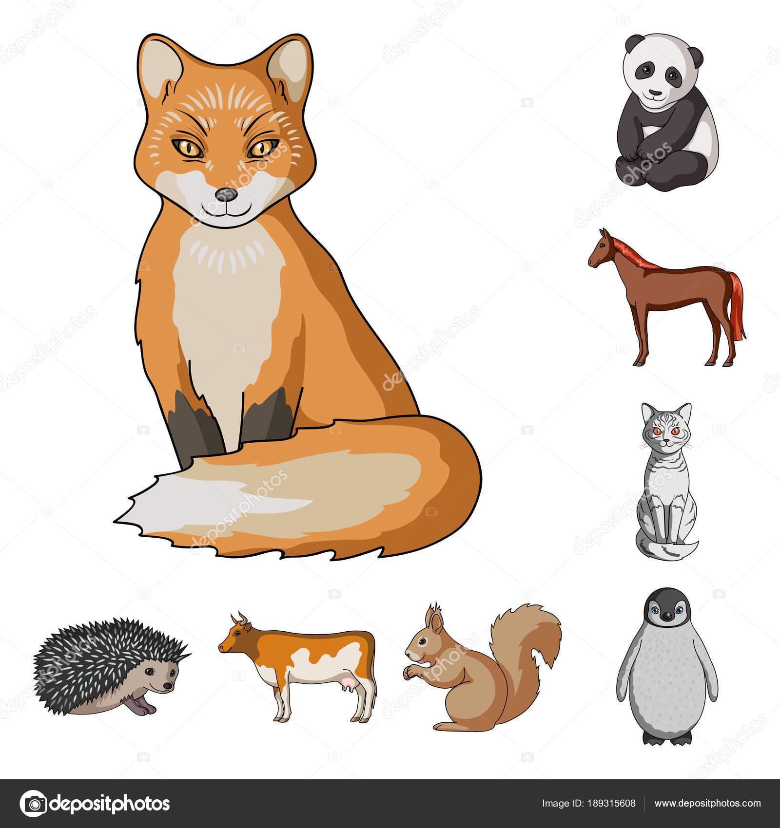 Dibujos Animales Domesticos En Caricaturas Animales Realistas