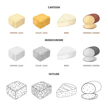 Brynza, smoked, colby jack, pepper jack.Different types of cheese set collection icons in cartoon,outline,monochrome style vector symbol stock illustration web.