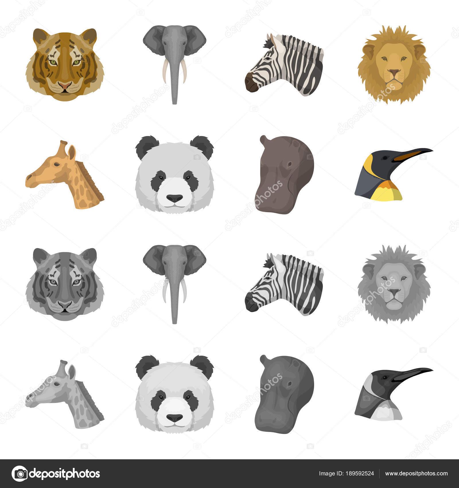パンダ、キリン、カバ、ペンギン、リアルな動物がモノクロ スタイル