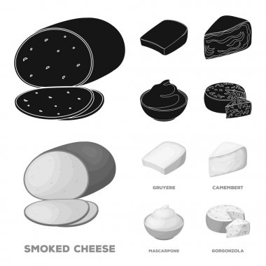Gruyere, camembert, mascarpone, gorgonzola.Different types of cheese set collection icons in black,monochrom style vector symbol stock illustration web.