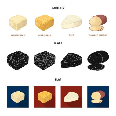Brynza, smoked, colby jack, pepper jack.Different types of cheese set collection icons in cartoon,black,flat style vector symbol stock illustration web.