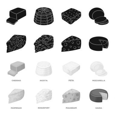 Parmesan, roquefort, maasdam, gauda.Different types of cheese set collection icons in black,monochrome style vector symbol stock illustration web.