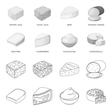 Gruyere, camembert, mascarpone, gorgonzola.Different types of cheese set collection icons in outline,monochrome style vector symbol stock illustration web.