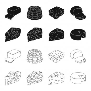 Parmesan, roquefort, maasdam, gauda.Different types of cheese set collection icons in black,outline style vector symbol stock illustration web.