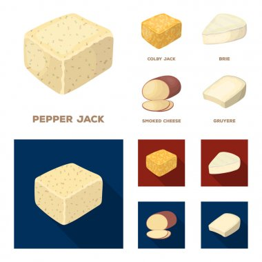 Brynza, smoked, colby jack, pepper jack.Different types of cheese set collection icons in cartoon,flat style vector symbol stock illustration web.