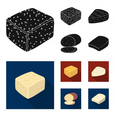 Brynza, smoked, colby jack, pepper jack.Different types of cheese set collection icons in black, flat style vector symbol stock illustration web.