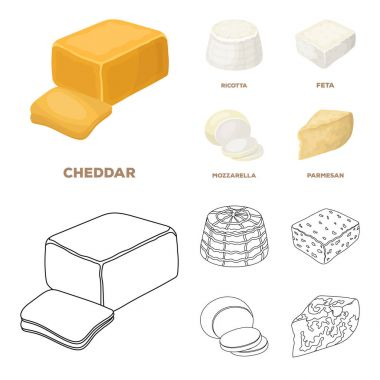 Mozzarella, feta, cheddar, ricotta.Different types of cheese set collection icons in cartoon,outline style vector symbol stock illustration web.