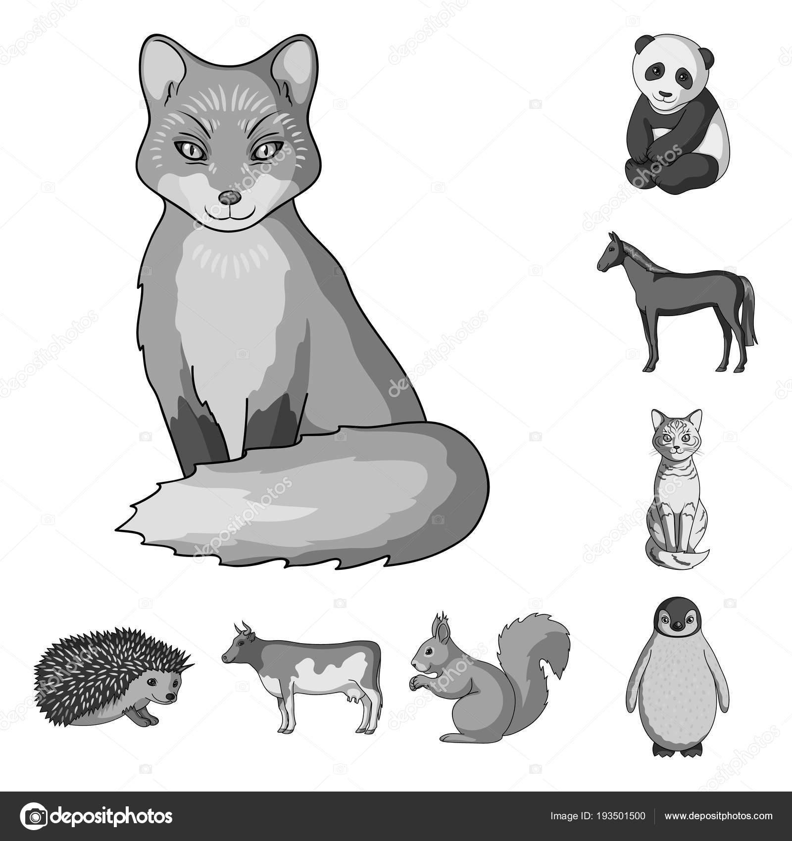 リアルな動物デザインのセットのコレクションのモノクロ アイコン。野生