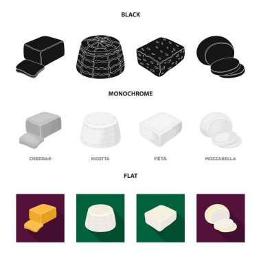 Mozzarella, feta, cheddar, ricotta.Different types of cheese set collection icons in black, flat, monochrome style vector symbol stock illustration web.