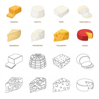 Parmesan, roquefort, maasdam, gauda.Different types of cheese set collection icons in cartoon,outline style vector symbol stock illustration web.