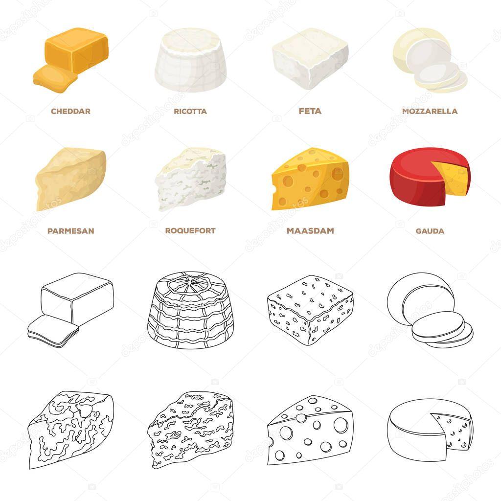 Parmigiano roquefort maasdam gauda diversi tipi di formaggio impostare icone insieme nel - Diversi tipi di figa ...