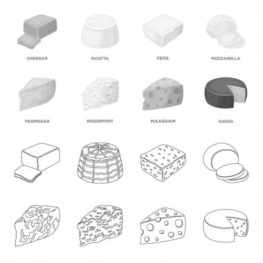 Parmesan, roquefort, maasdam, gauda.Different types of cheese set collection icons in outline,monochrome style vector symbol stock illustration web.