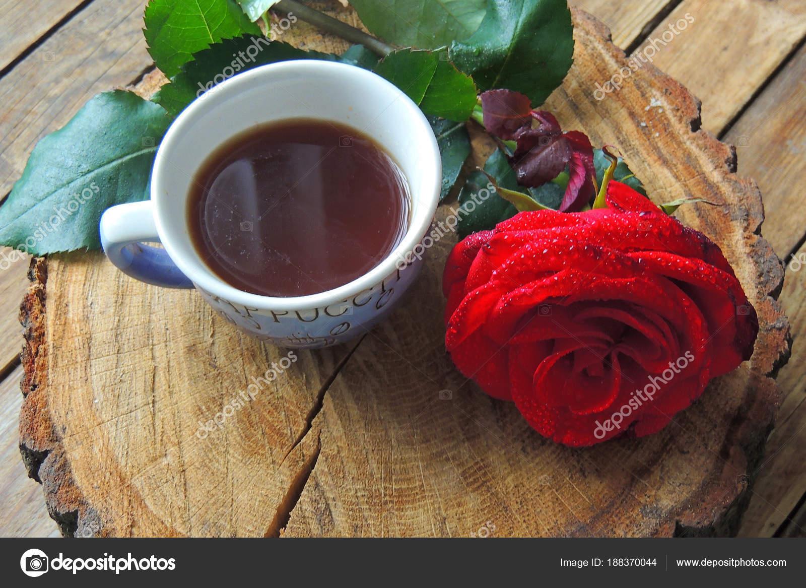 Café Y Rosa Para Ti Fotos De Stock Tanya1991 188370044