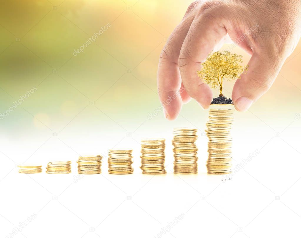 Investment concept: Human hand holding one coin and golden tree with stack of coins over blurred nature background.