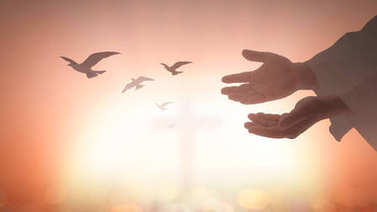 Easter Sunday concept: Silhouette human open two empty hands with palms up and birds flying over blurred cross in church background stock vector