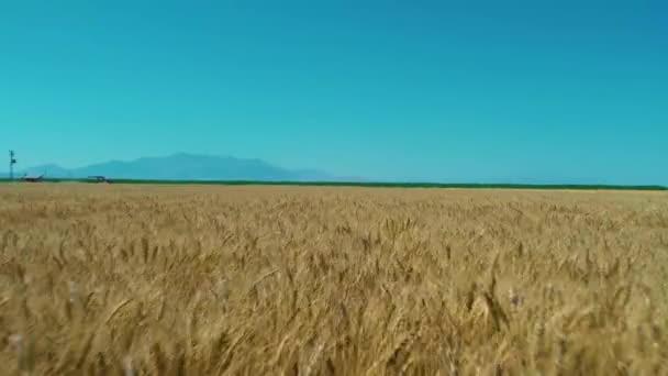 široké zemědělské pláně letecký pohled