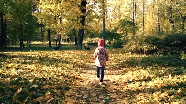 Dítě je pěší podél the podzimní cesta Slowmotion