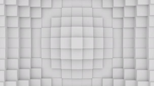 Absztrakt Cubical Geometric Tube Surface Loop.Minimális négyzet rács minta, rendszeres hullámzó mozgás háttér vászon tiszta falban. Zökkenőmentes hurok 4K felvétel
