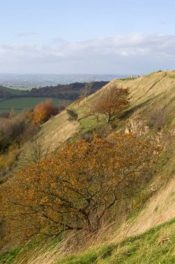 An autumn view towards the Severn Vale from Uley Bury, Gloucestershire, Cotswolds, UK