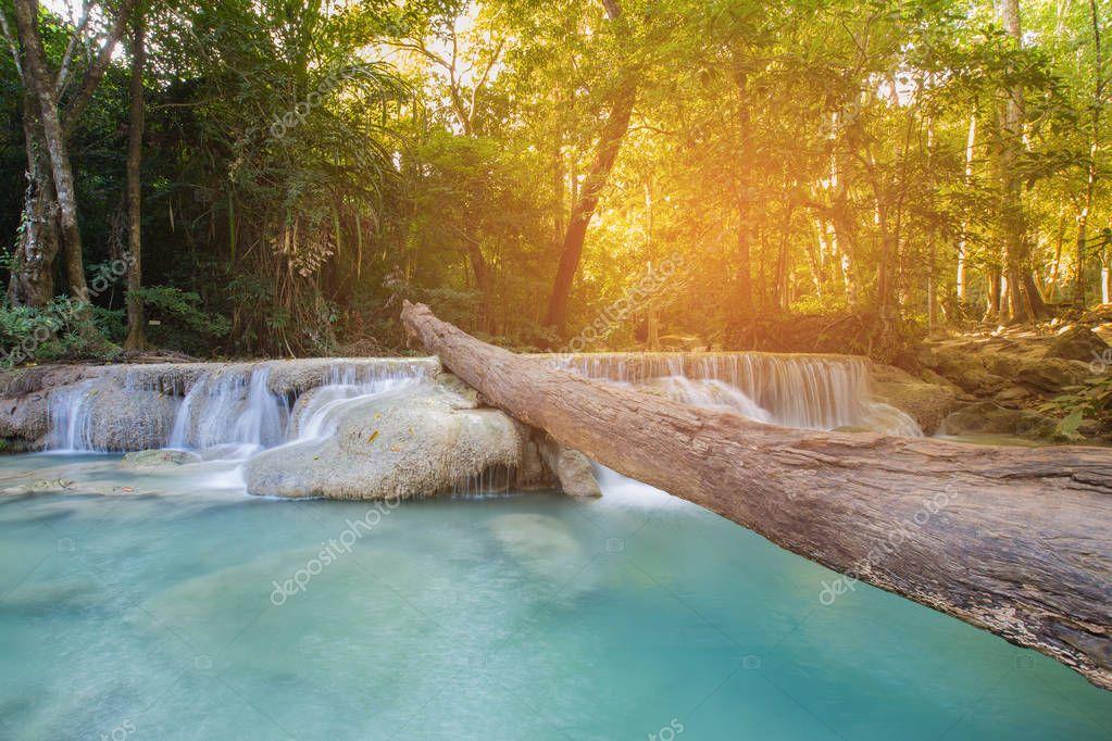 Фотообои Tropical deep forest stream waterfall
