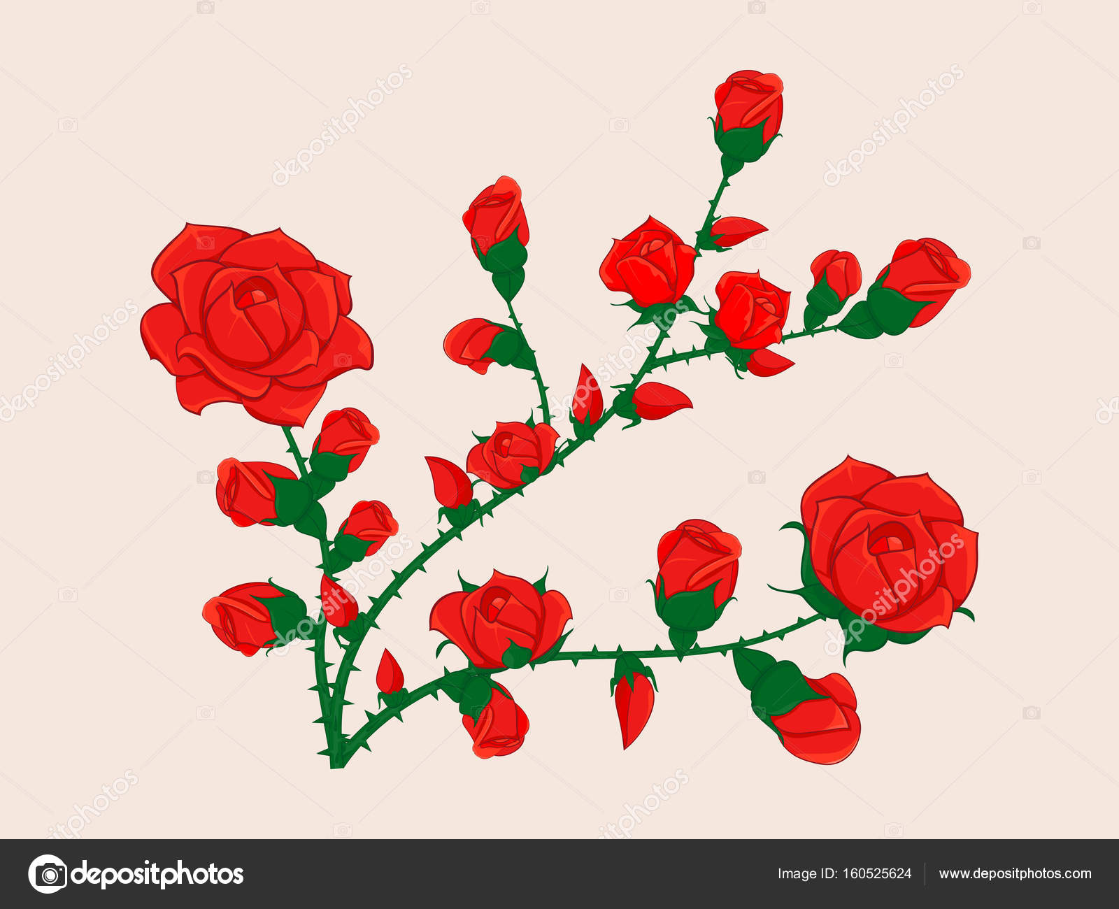 Imagenes De Rosas Para Dibujar A Color