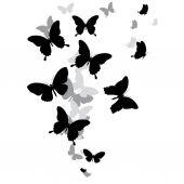 Fotografie černý motýl, izolované na bílém