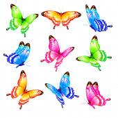 světlé barevné motýly izolované na bílém pozadí, jarní koncept
