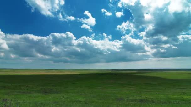 Video Letní krajiny přírody
