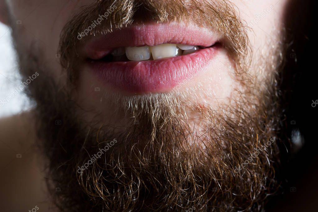 Борода и усы стихи