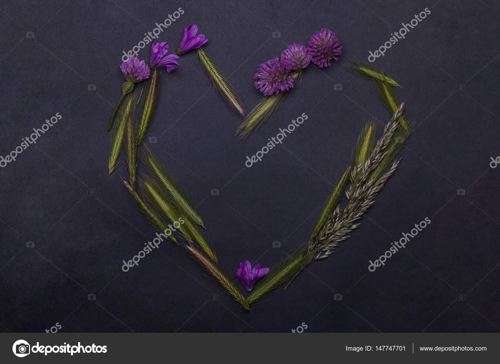 Beautiful Spring Flowers And Spikelet Grass Floral Seasonal Blossom