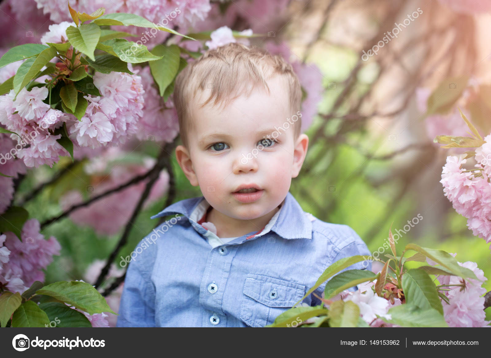 cute baby boy among pink blossoming flowers — stock photo