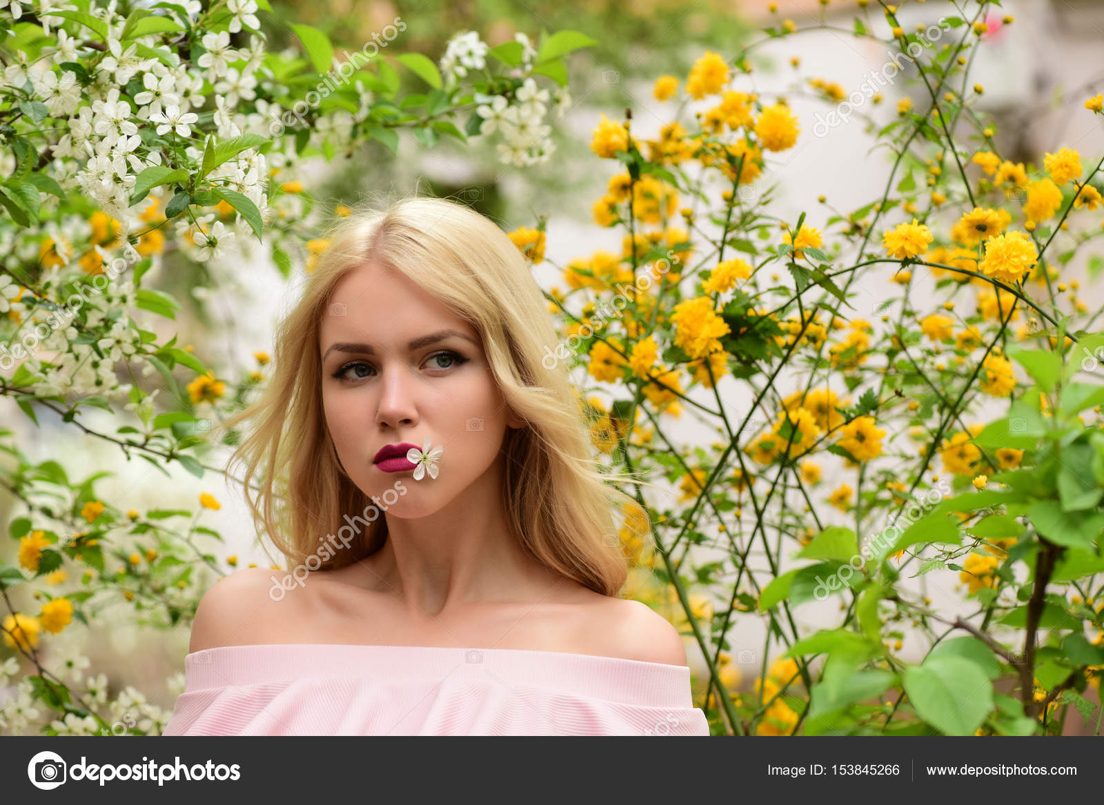 Young Beautiful Woman Near Cherry Tree With Flowers Stock Photo