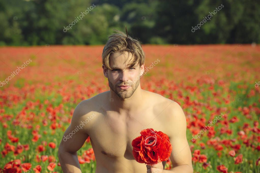 man with muscular body in field of red poppy seed